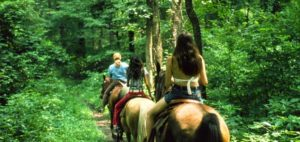 Indiana Horse Trails
